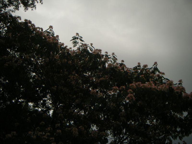 Bloggyblog 108