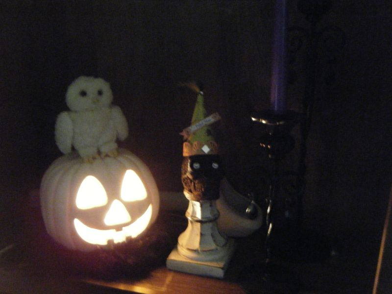 Halloween 016
