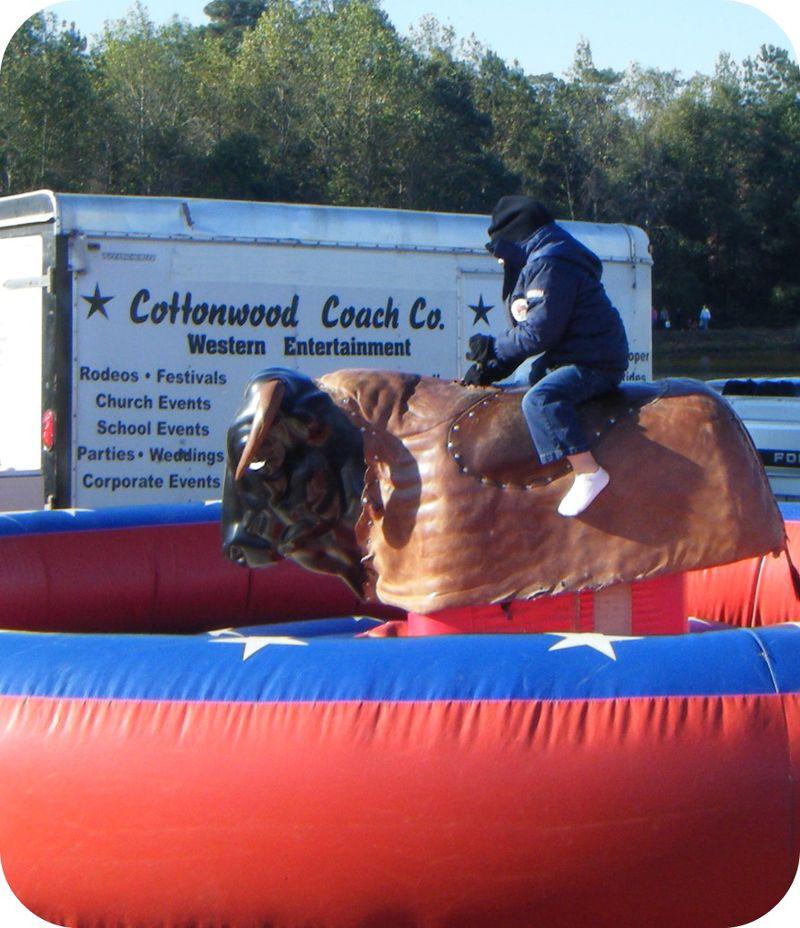 Mule Day Future Cowboy